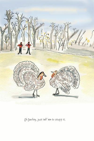 toons turkey stuff it